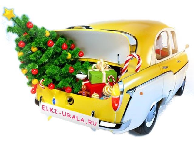 Доставка елок в Екатеринбурге и пригородах 8 (343) 206-26-13, 8 (902) 443-26-13